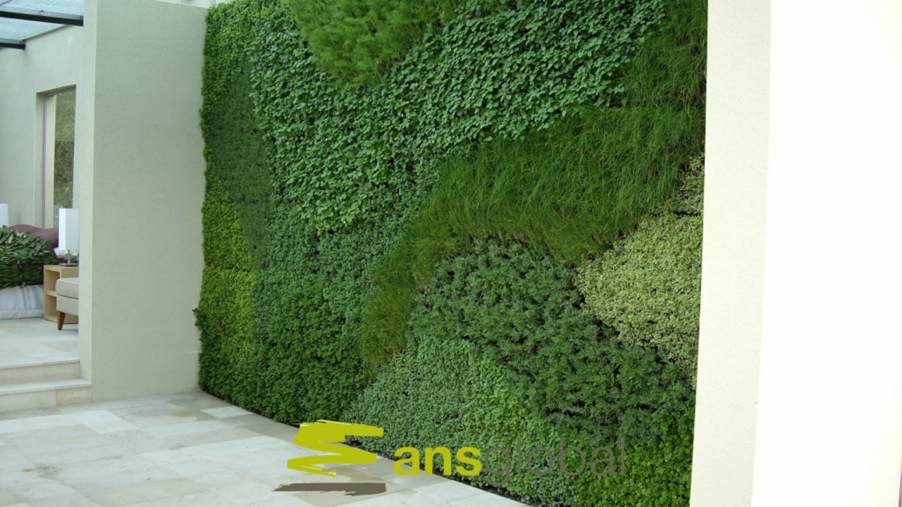 Jardim Vista represents ANS Living Walls in Portugal and Spain
